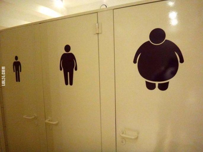 Toaleta dla otyłych? #toaleta #otyłych