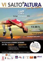 VI Exhibición  de salto de altura en la calle [Deporte]