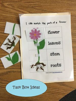 Little Miss Kimberly Ann: Quick and easy task box ideas!