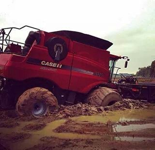 CASE IH Combine in the mud