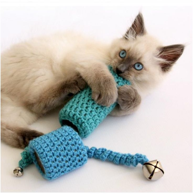 17 Best Images About Cat Toy Crafts On Pinterest Easter