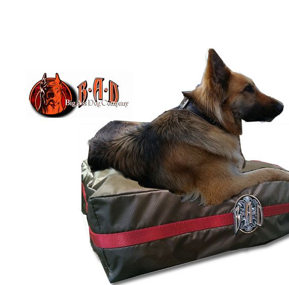 46 best Top Extra Large Dog Bed Designs images on ...