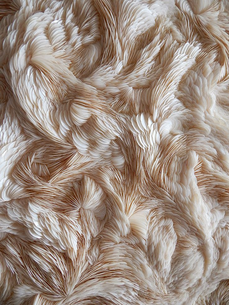 Experimental Textiles Design with intricate feather textures; fabric manipulation; textile art // Rowan Mersh