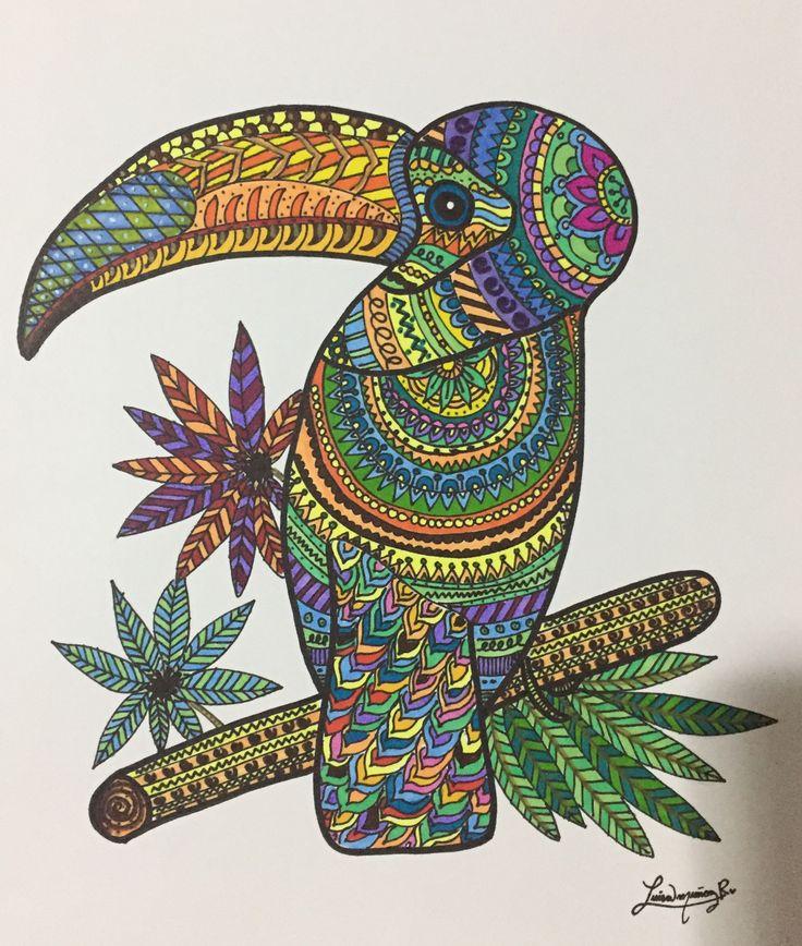 Bird - Luisamr