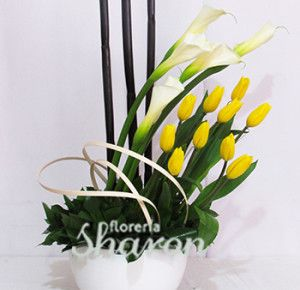 Alcatraz | Categorías de los productos | Florerias DF | Arreglos Florales | Flores a domicilio | Floristeria |