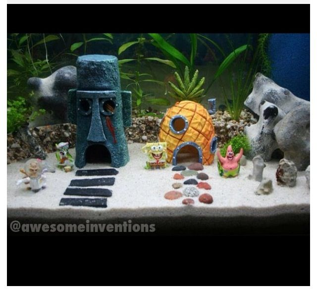 How to decorate your boring fish tank fish spongebob for How to decorate fish tank