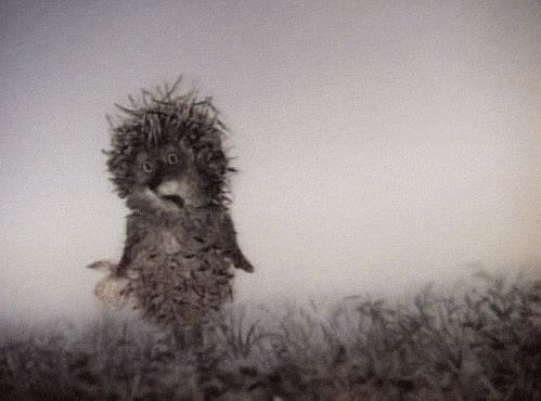 """i love this russian animated film """"Hedgehog in the fog"""" from 1975, by yuri norshteyn. you can watch it on youtube!"""