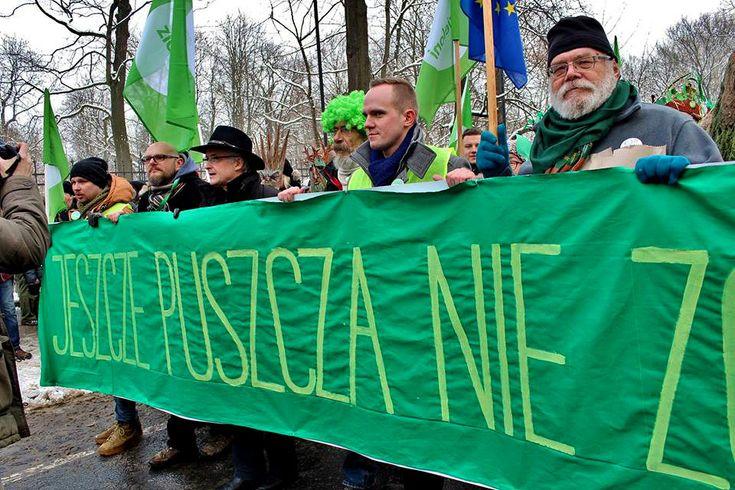 Marsz Entów w obronie Puszczy Białowieskiej Warszawa 17.01.2016