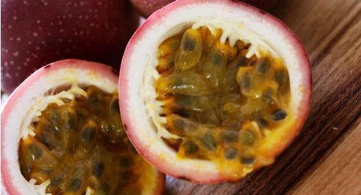 Tui Garden | Janene's Passionfruit Coconut Tart