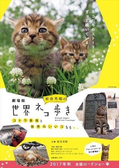 岩合光昭さんの「世界ネコ歩き」が映画に 大画面で見るネコの姿にネコ好きさんたちが歓喜しそう