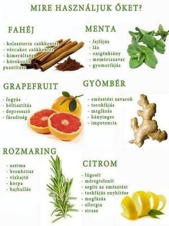 Fahéj, menta, gyömbér, grapefruit, citrom és rozmaring. Érdelek, hogy mire jók ezek a növények? Nézd meg itt és Te is igyekezz a természetes megoldást választani a szintetikus gyógyszerek helyett!