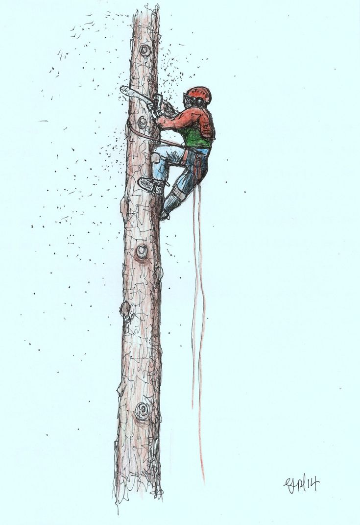 A4 print Arborist ,Tree Surgeon using stihl 020T chainsaw,husqvarna,art painting by JapaneseKoiPainting on Etsy