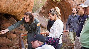 Guided Mala Walk, Uluru-Kata Tjuta National Park