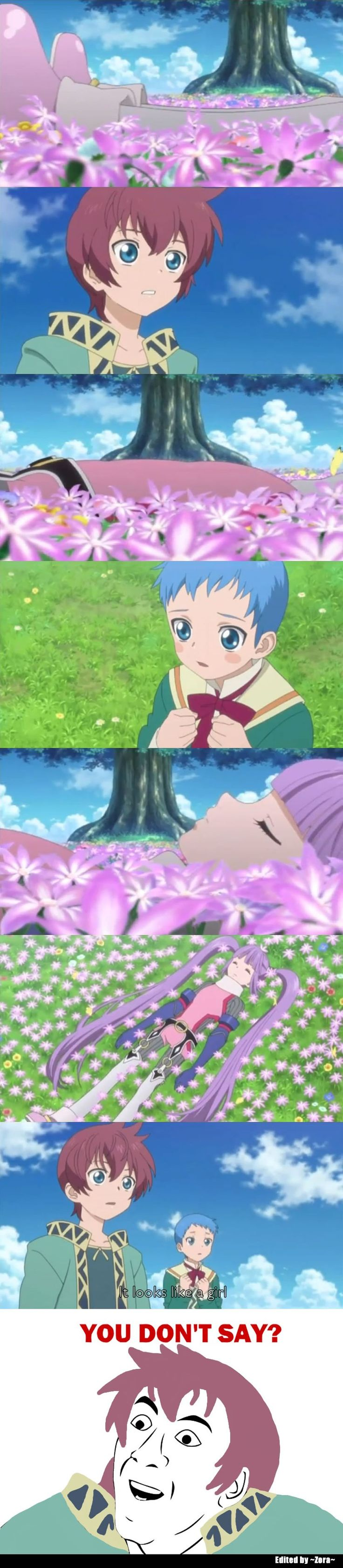 Tales of Graces F - Funny Meme by InsaneRaccoon on DeviantArt