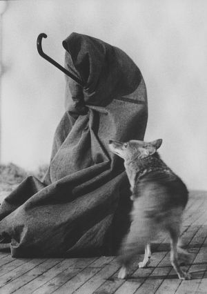 """Joseph Beuys, """"I Like America and America Likes Me"""" - Beuy's hangs in a room with a coyote for a while. Art or lifestyle choice?"""