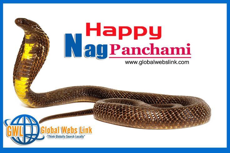 India celebrates #Nag #Panchami today. The festival is observed on the Shukla Paksha Panchami during Sawan month in the Hindu calendar. #Happy #Nag #Panchami http://globalwebslink.com/