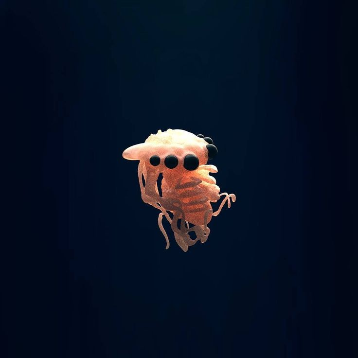 Squishy alien embryo  #zbrush#art#artist#artwork#creature#monster#fantasy#concept#sculpting#digitalart#creative#artoftheday#biology#illustration#science#earthporn#cartoon#painting#nerd#photooftheday#gamedev#conceptart#game#logo#graphics#instaart#motiongraphics#animal#animation#sketchbook