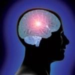 creierul schimba....