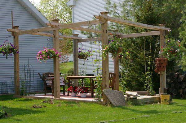 50 best images about hop trellis ideas on pinterest for Hops garden designs