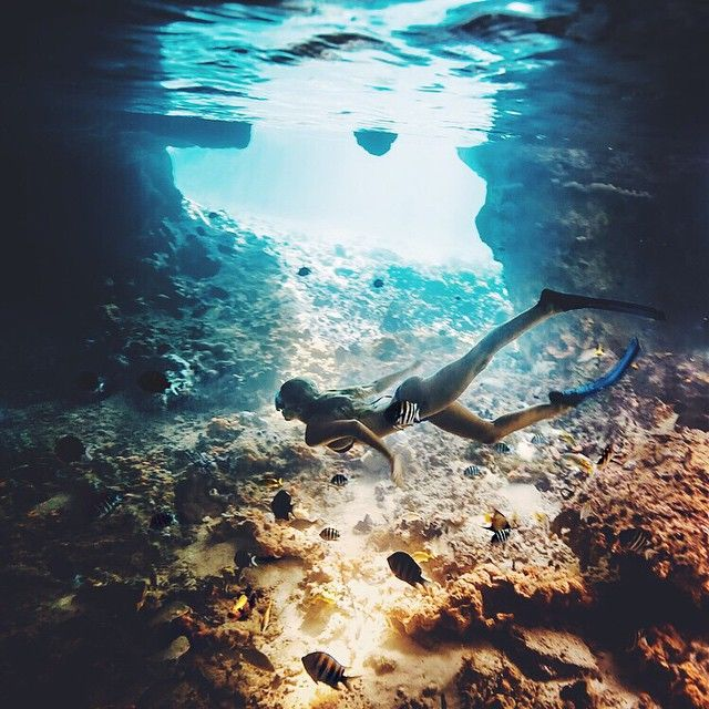 Under the sea | Tash Oakley