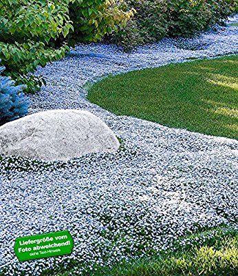 14 besten Garten Bilder auf Pinterest | Garten deko, Hufeisen ...