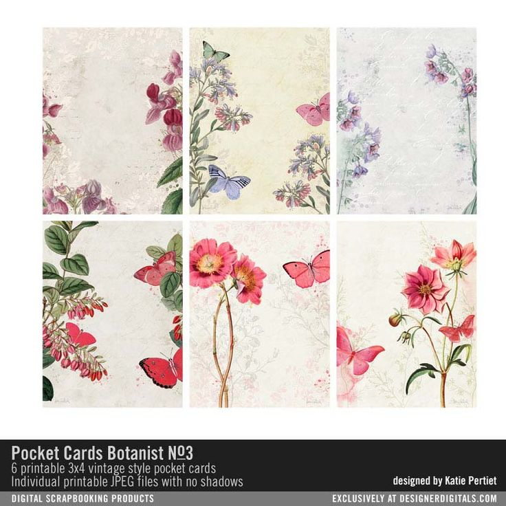 Карманные карты: Ботаник No. 03- Katie Pertiet элементы- EL167634- DesignerDigitals