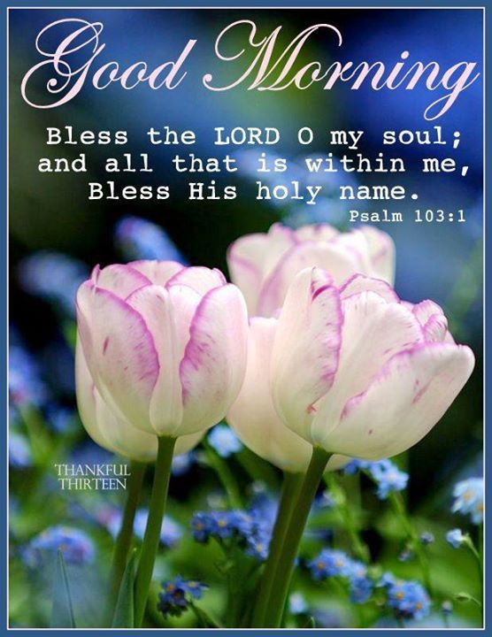Good Morning Bless The Lord