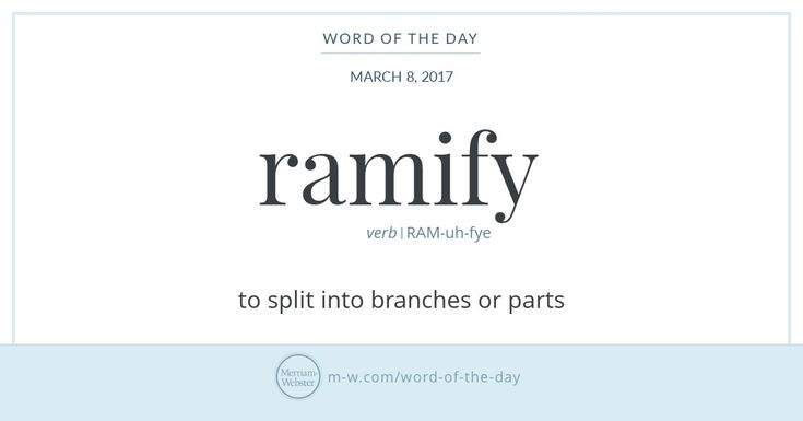 Ramify has been part of English since the 15th century and is an offshoot of the Latin word for 'branch,' which is ramus. English acquired several scientific words from ramus, including biramous ('