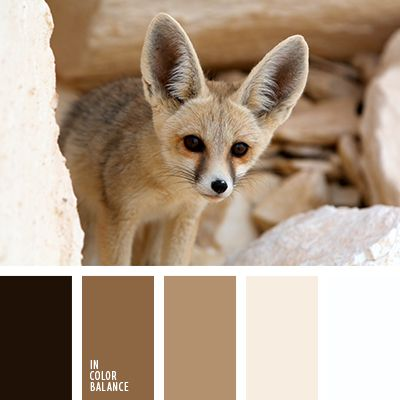Monochrome shades of brown from dark to light, almost white color suitable for decoration in any room of the robot. These colors create a cozy and harmony.