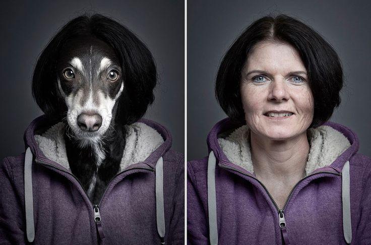 portraits de chiens habilles comme leurs maitres 3   Des chiens habillés comme leurs maîtres   Sebastian Magnani photo perruque maitre image habit chien
