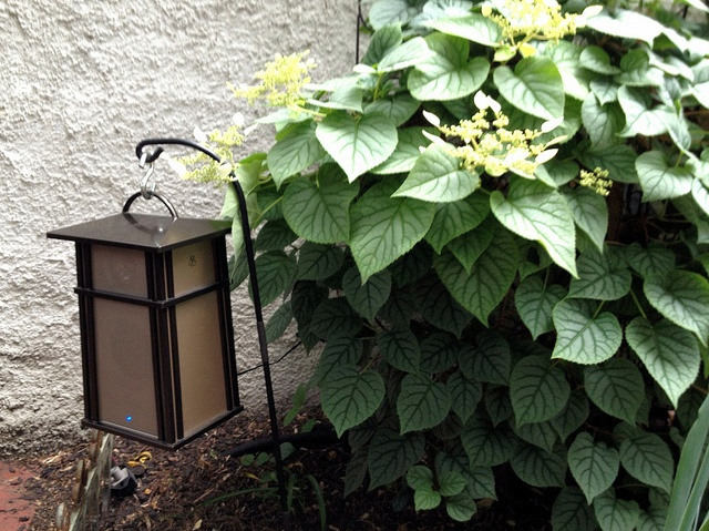 Toolbox Tuesday: The Sweet Sound of Wireless Outdoor Speakers - Old Town Home