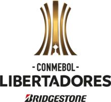 Libertadores Bridgestone