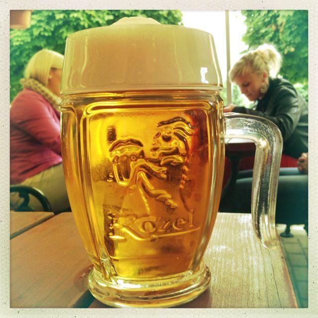 Velkopopovicky Kozel - Czech Beer Czech beer in New Zealand - http://www.beerz.co.nz/ #Czech #beer #nzbeer #newzealand