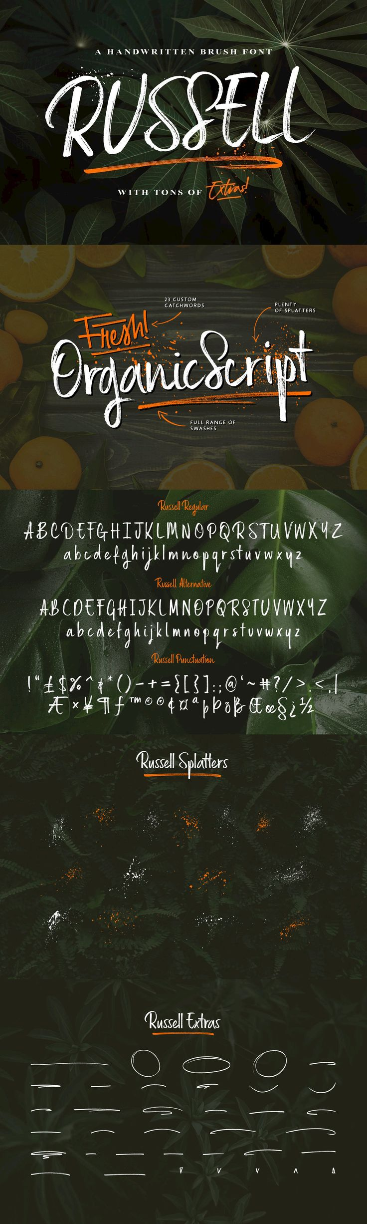 best fonts u stuff images on pinterest graph design
