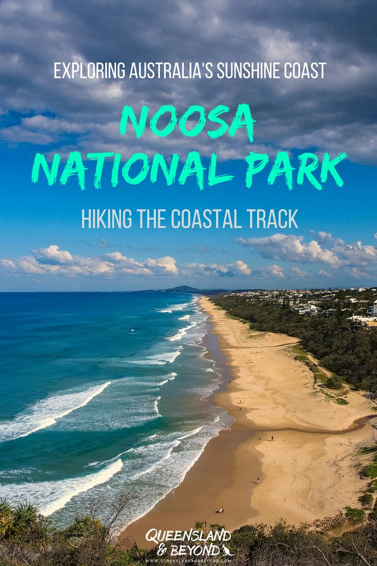 Noosa National Park offers some stunning walks, best of all the Coastal Track. Steep cliffs, turquoise blue water and endless views of Sunshine Beach! 🌐 Queensland & Beyond #australia #sunshinecoast #walks #hiking #noosa #queensland