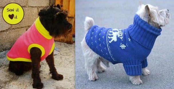 Plusieurs idées pour confectionner des manteaux pour petits chiens, à partir de trois fois rien.