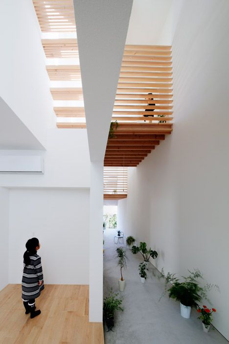 A corridor functions as an indoor garden for this house in Toyota, Japan, above which architect Katsutoshi Sasaki has installed wooden sleeping platforms