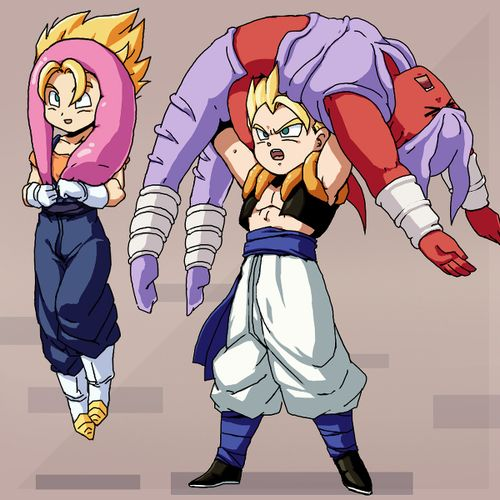 Vegeto/super buu and gogeta/janimba