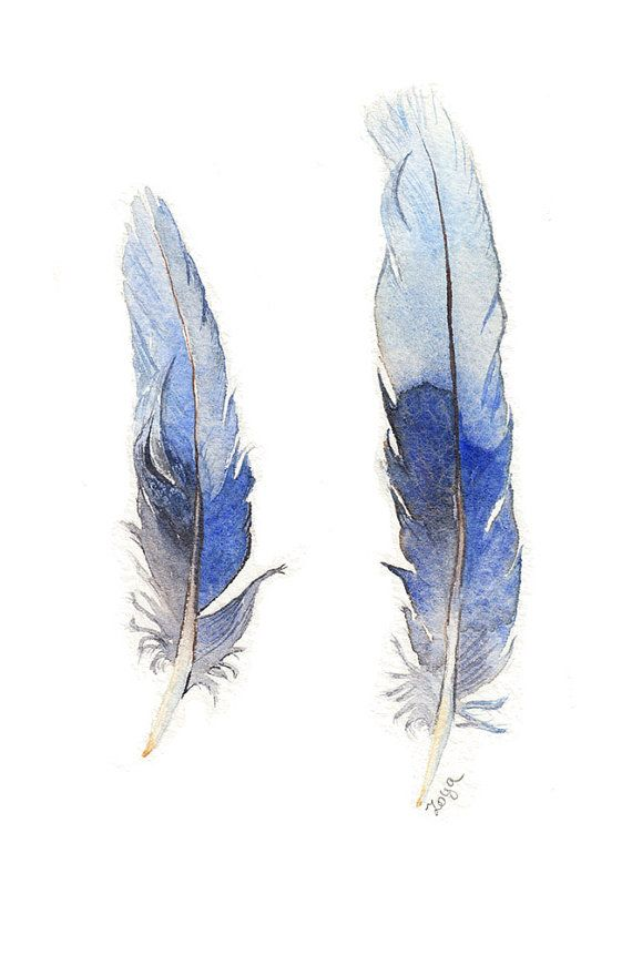469 best images about feathers illustrations on pinterest