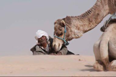 Méharée en Tunisie : Du désert de Zaafrane aux montagnes de Toujane
