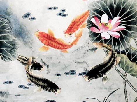 37 best images about chinese new year art on pinterest for Chinese coy fish
