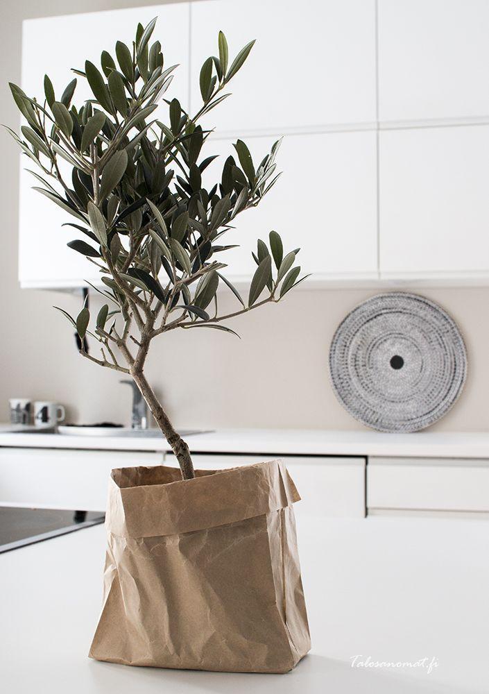 Leuk effect deze papieren zak als bloempot.   Meer wooninspiratie op mijn interieurblog http://www.interieurinspiratie.nl/