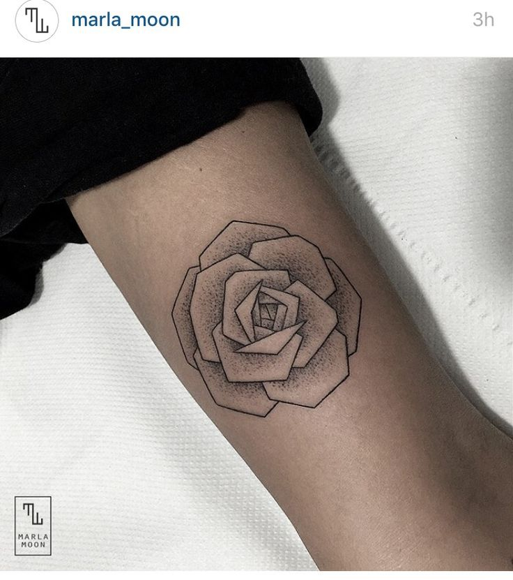 70 Perfect Tattoos That Every Woman Can Pull Off: 25+ Beste Ideeën Over Roos Arm Tatoeages Op Pinterest
