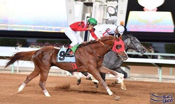 تتويج الإسطبل الأحمر في نهاية سباق الخيل السنوي الكبير نيابة عن خادم الحرمين الشريفين الملك سلمان بن عبدالعــزيز الرئيس الفخري لنادي Horseriding Sports Horses