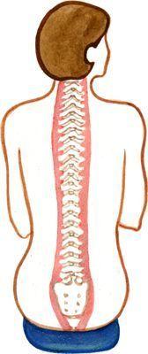 Sciatica Relief Pillow | Improve Sitting Posture | Reduce Back Pain
