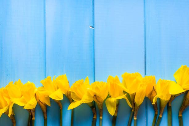1000 Images About Easter Wallpaper On Pinterest: Best 25+ Easter Background Ideas On Pinterest