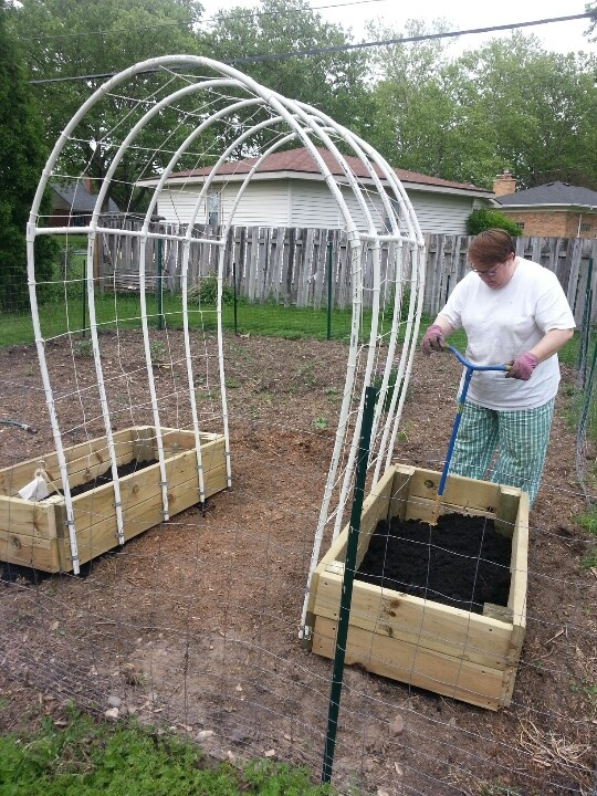 "Trellis is made from ten 10' pieces of 1/2-inch exterior grade PVC. The sides are ten 4-1/2' pieces,  the arches are five 5-1/2' pieces with eight 1' sections to help stabilize. Four 3-pronged 1/2"" PVC connectors, six 1/2"" 4-pronged PVC connectors, and 20 1/2"" galvanized U-shaped brackets. The netting is made of cotton chalkline tied and knotted across all poles and then up and over to divide the sections, which are 1' wide."