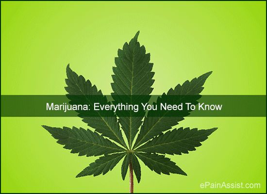 Marijuana: Everything You Need To Know Read: http://www.epainassist.com/question-and-answer/marijuana-everything-you-need-to-know
