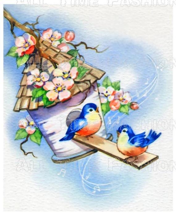 Blue Birds in their birdhouse