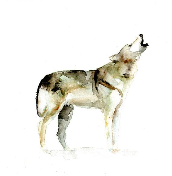 Waterverf schilderij van een Wolf. Reproductie door Zendrawing, €15.50